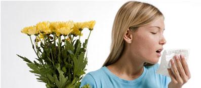 распрощайтесь с пылью, пыльцой и неприятными запахами